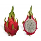 DRAGON (FRUITS)