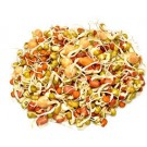 SPROUTS MIX 120GM